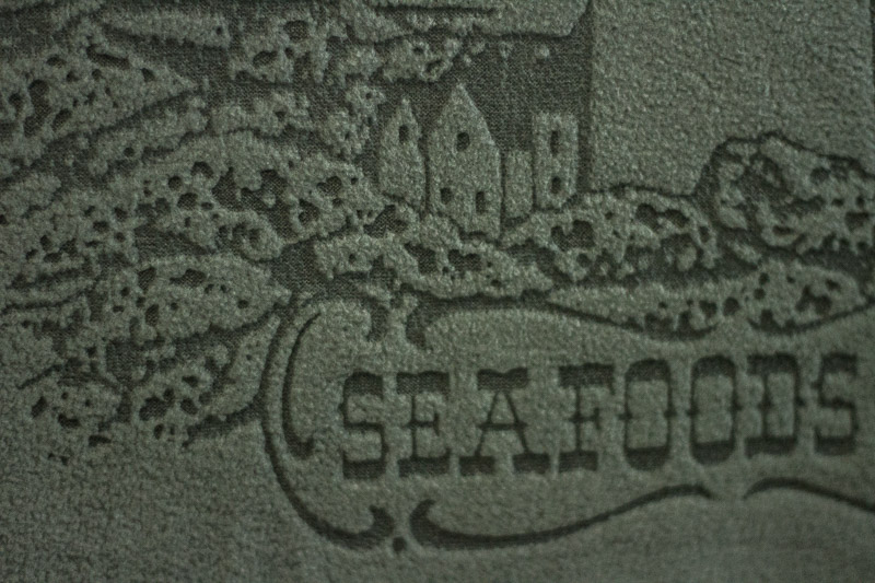 Laser Etching on Fleece