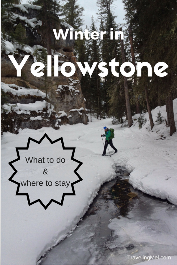 Winter is a great time to visit Yellowstone National Park. Everything you need to know about what to see, what to do, and where to stay in Yellowstone in winter.