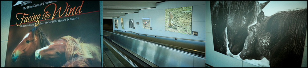 Denver International Airport Exhibit