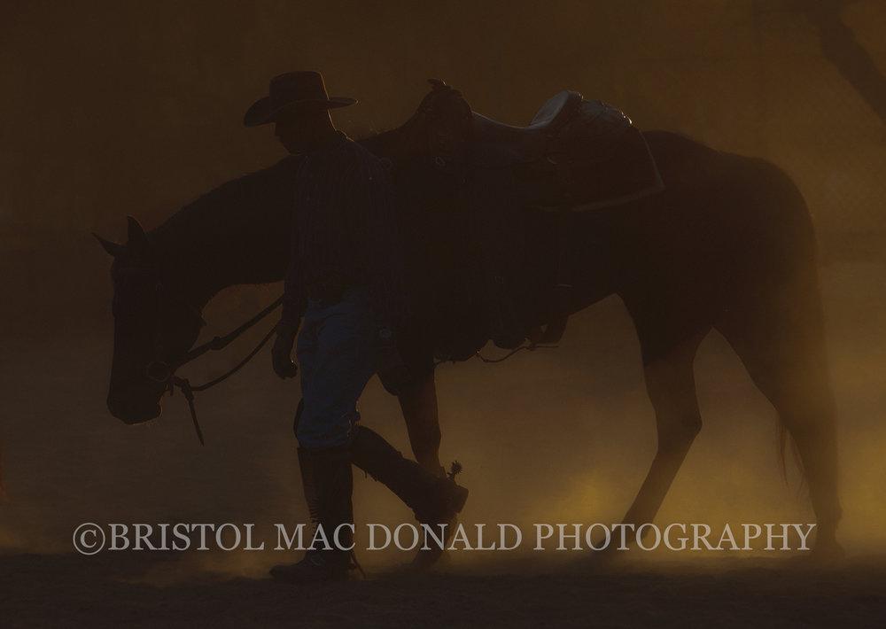 American Cowboy 3