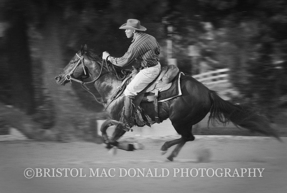 American Cowboy 10