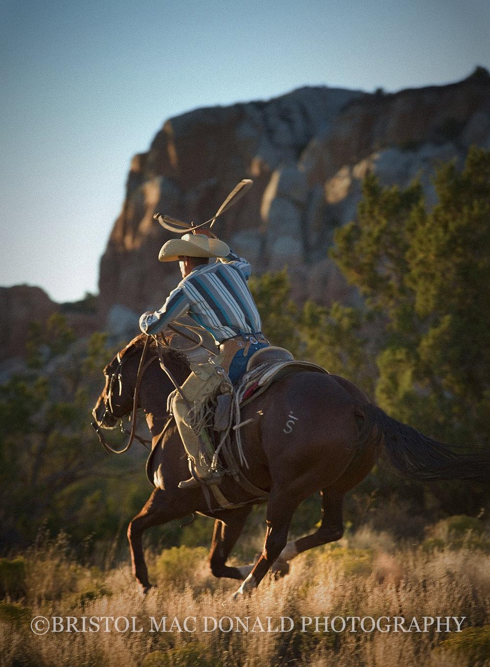 American Cowboy 14