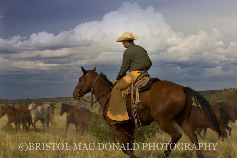 American Cowboy 21