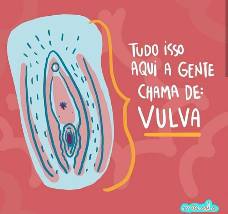 se_olha_3.png