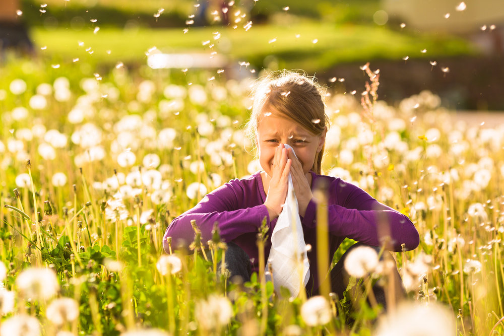 bigstock-Girl-sitting-in-a-meadow-with--37087252.jpg