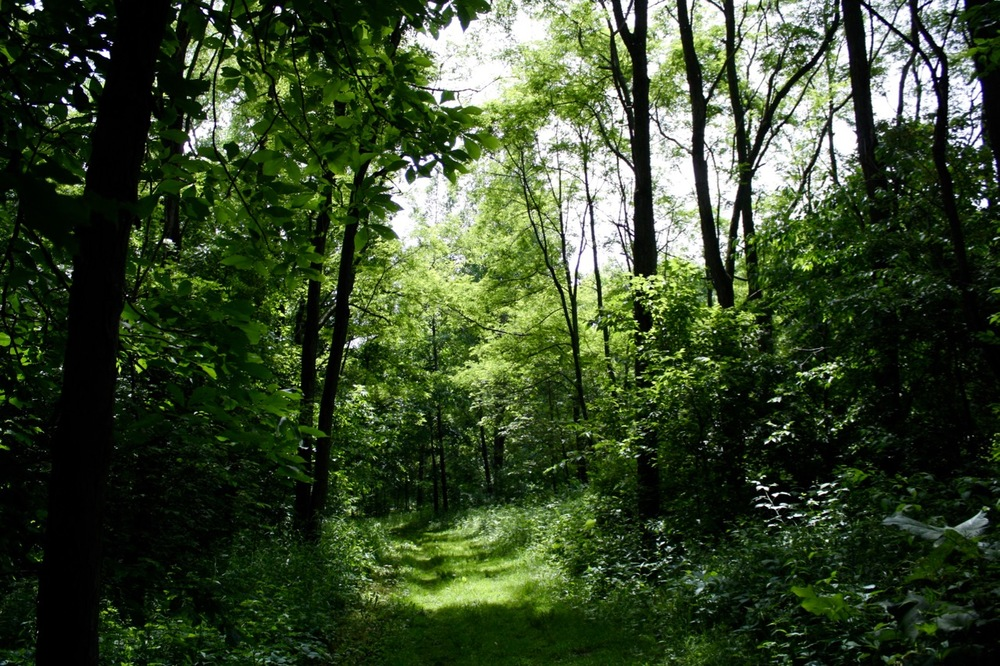 Green Trail, Governor Dodge State Park