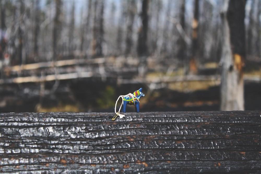Dalahäst och den brända skogen