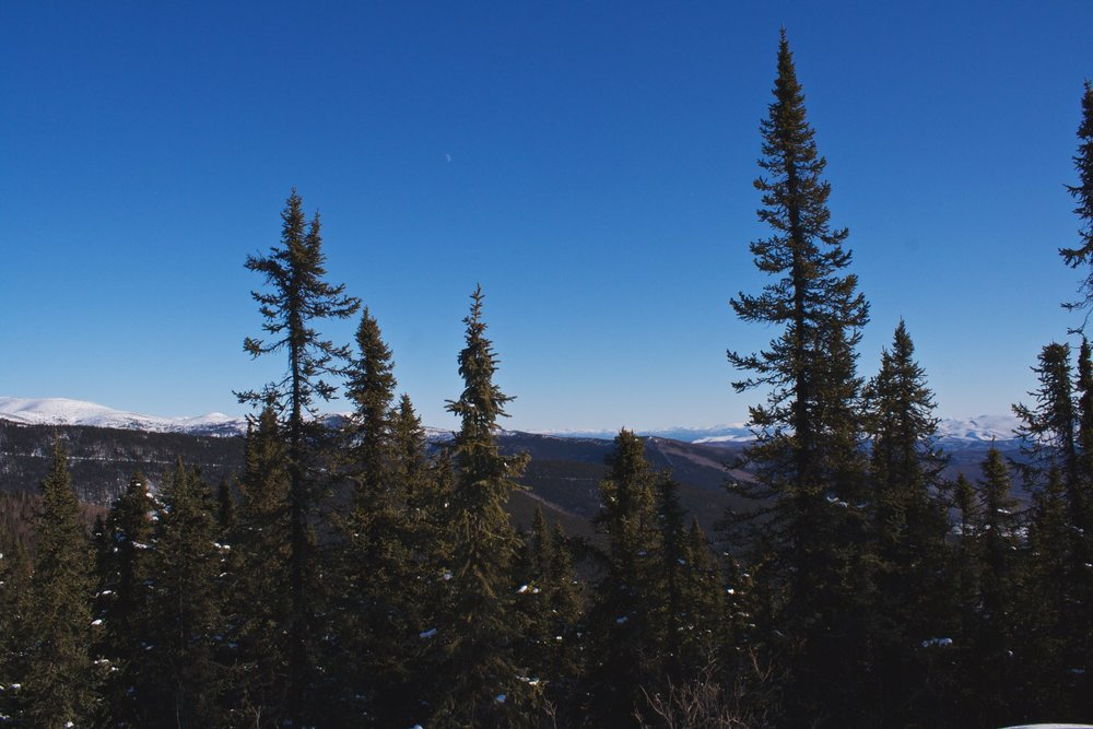 That white line in the distance, is the ski trail I just skied