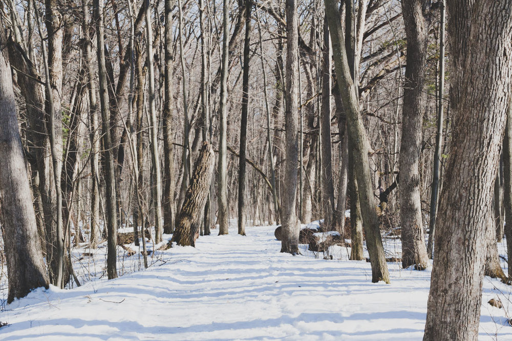 -our feet sank down into the wet snow - as we started walking on the Grotto trails