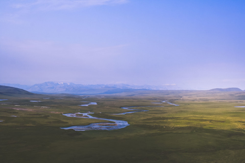 Onsdagstankar - It will be a grand triumph for America if we can preserve the Arctic Refuge in its pure, untrammeled state. To leave this extra ordinary land alone would be the greatest gift we could pass on to future generations. - Jimmy Carter