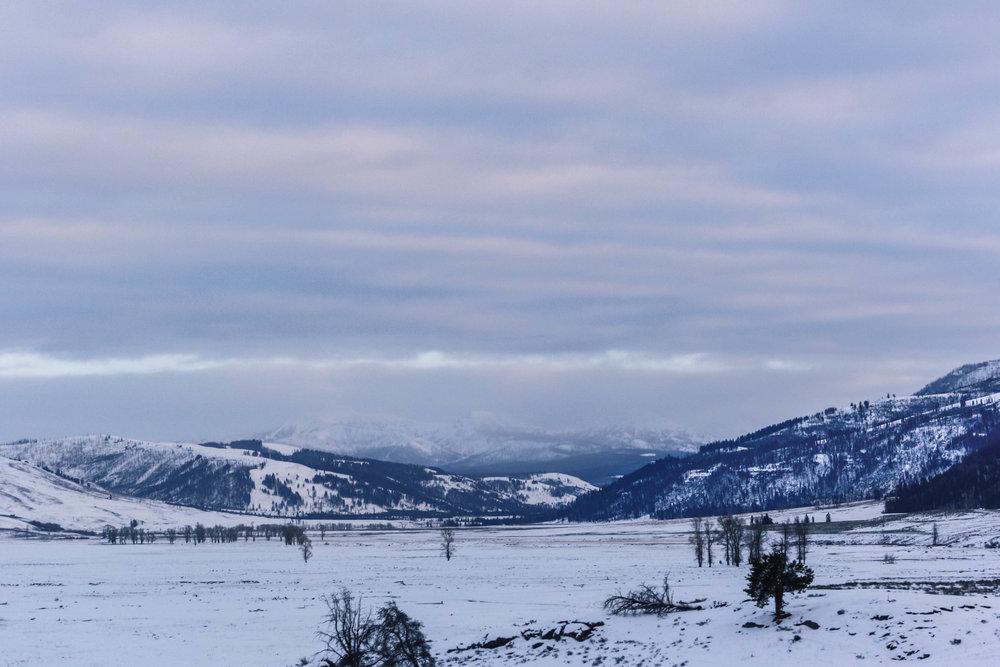 IMG_7537-December 31, 2012.jpg