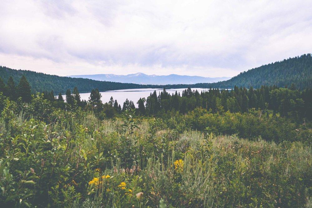 Phelps Lake, Wyoming. July 2017