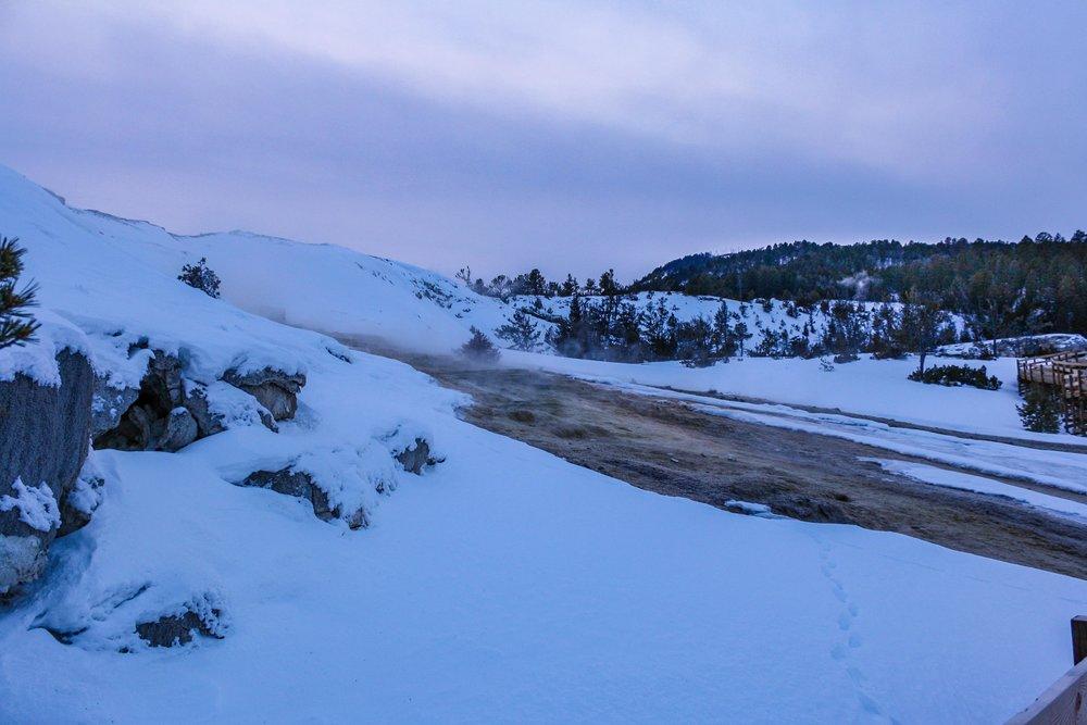 IMG_1274-December 26, 2011.jpg