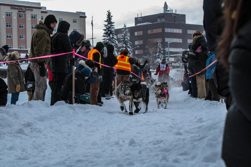 Fairbanks Alaska. Yukon Quest 2012