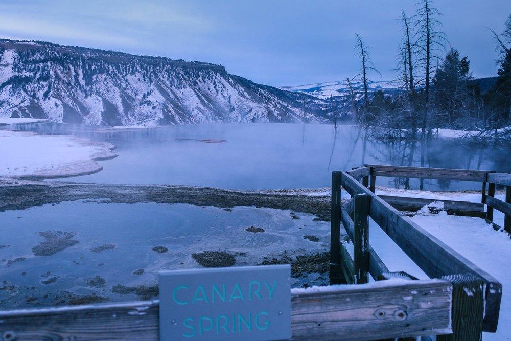 IMG_1369-December 26, 2011.jpg