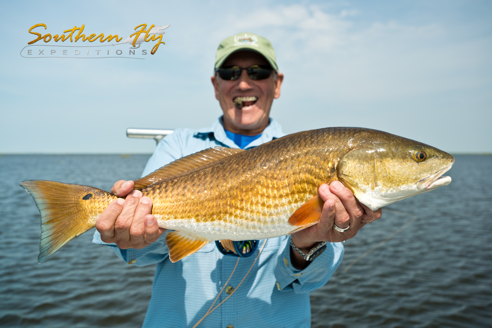 Southern fly expeditions louisiana backcountry fly for Fly fishing redfish
