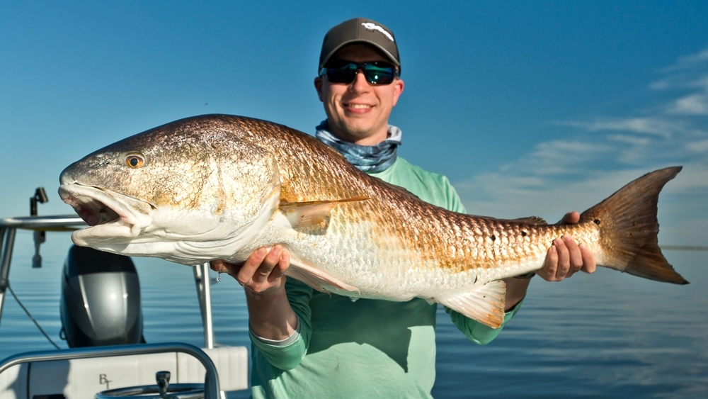 Southern fly expeditions new orleans louisiana fly for Fly fishing new orleans