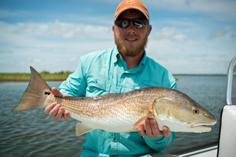 Fly Fishing New Orleans Louisiana Marsh Redfish