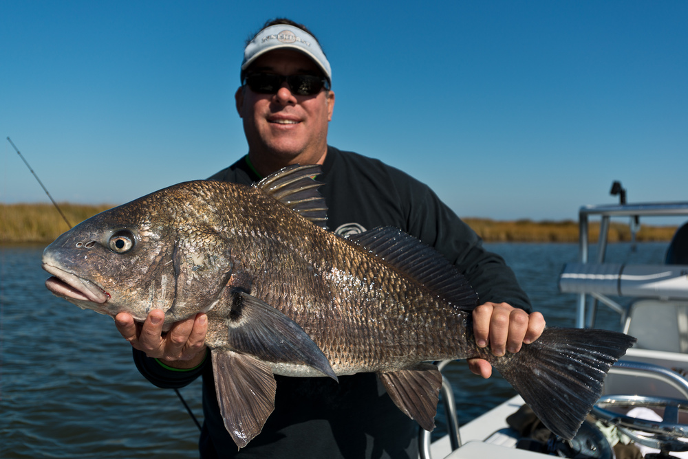 Fly Fishing for Blackdrum New Orleans Louisiana with Southern Fly Expeditions