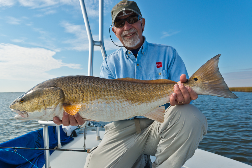 Fly Fishing for Redfish with Southern Fly Expeditions of New Orleans