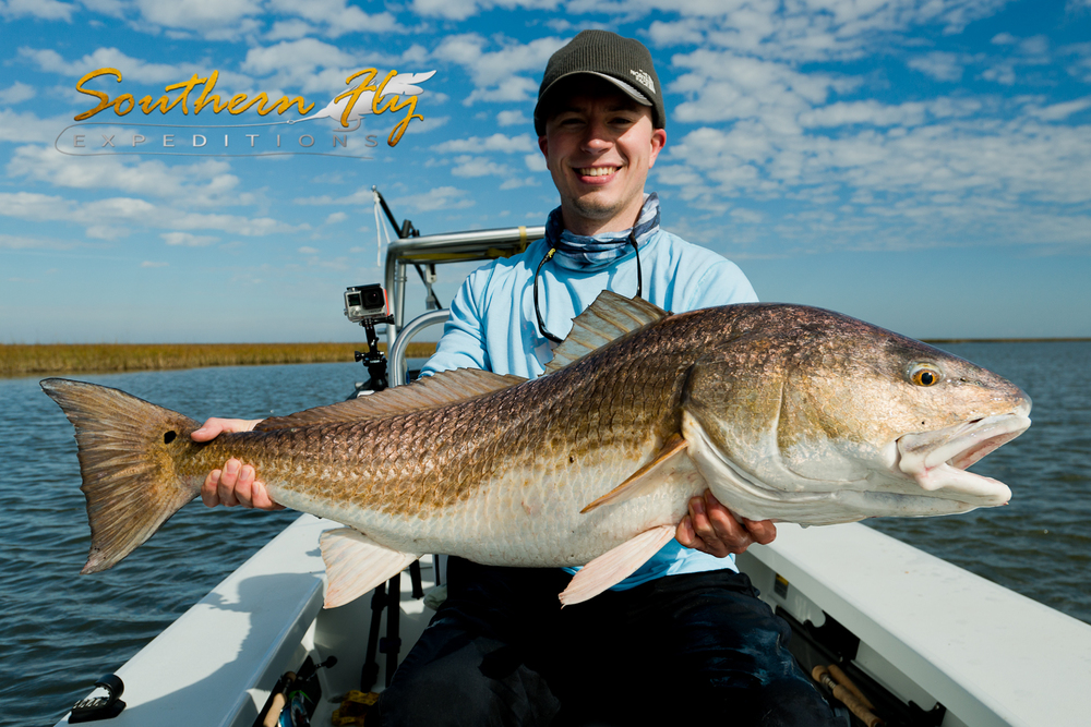 Redfish Fly Fishing Photos with Southern Fly Expeditions