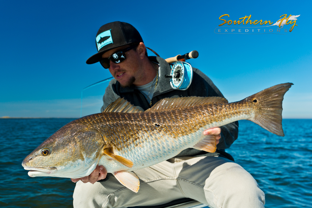 Fly Fishing Trips Louisiana with Southern Fly Expeditions