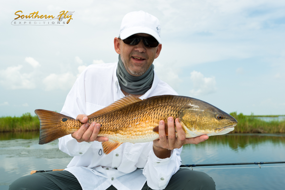 June 2015 Redfish Photos with Southern Fly Expeditions