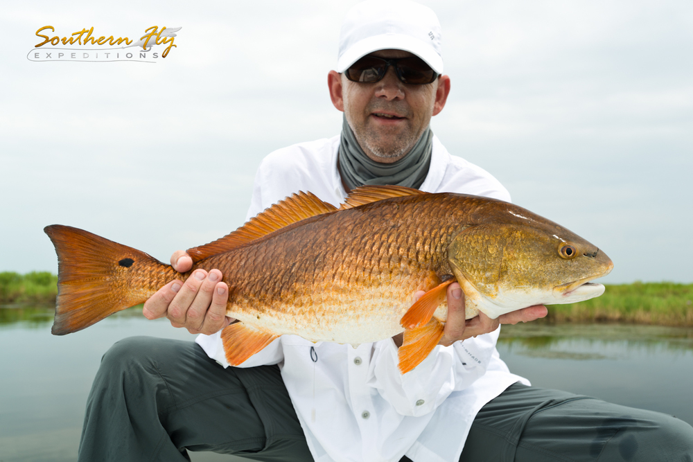 Fly Fishing Trips June 2015 Photos with Southern Fly Expeditions of New Orleans