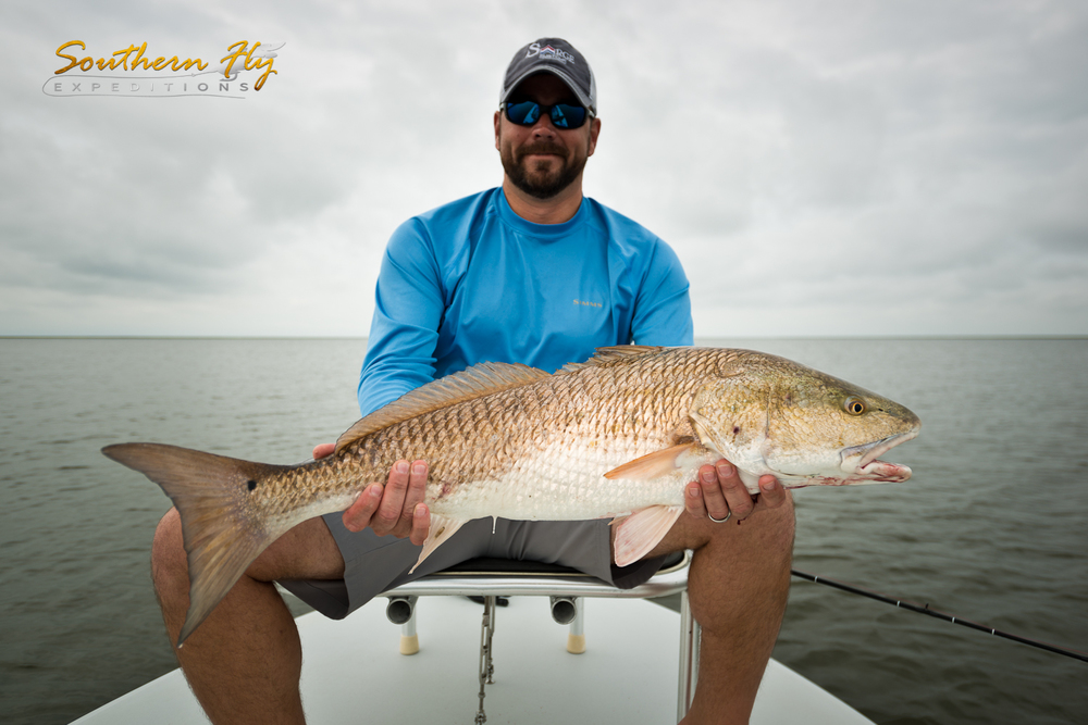 Shallow Water Fly Fishing for Bull Reds