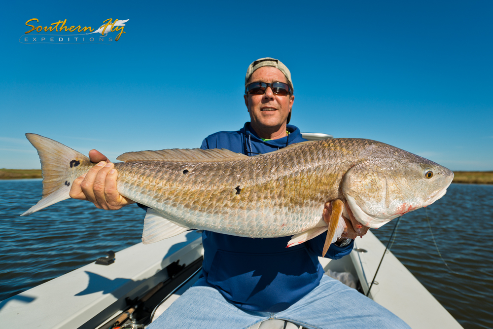 Bull Reds Inshore Fly Fishing