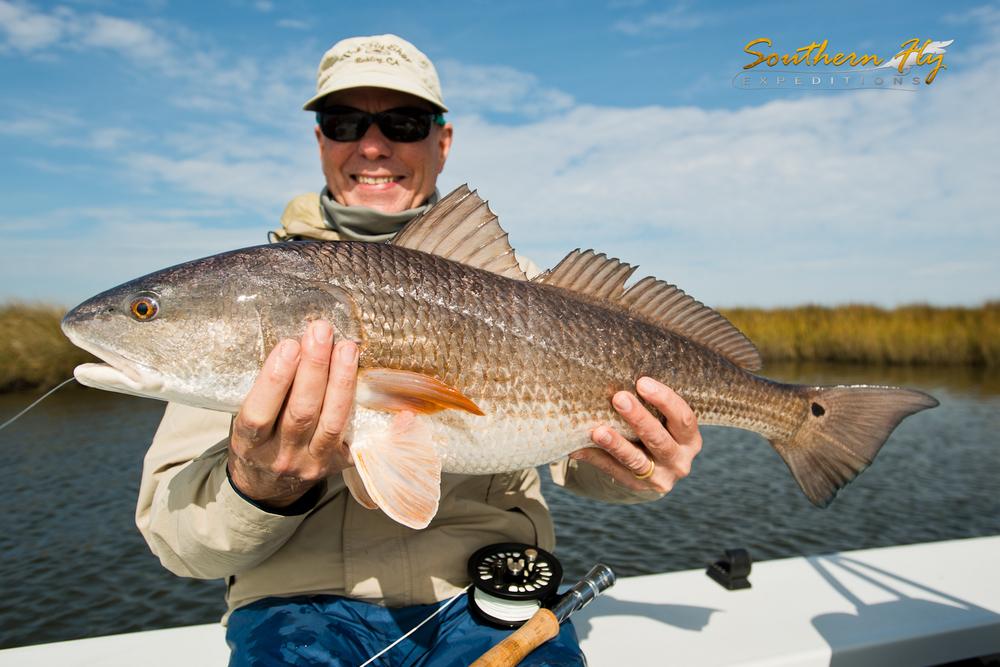Juvenile Spottail Bass Challenges Angular