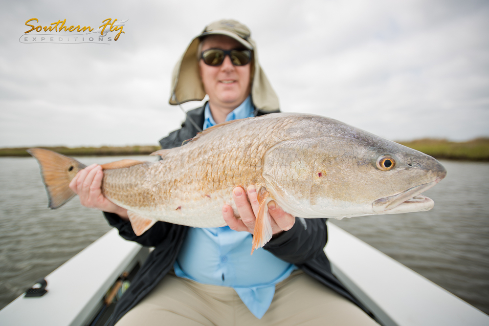 Louisiana Marsh Fly Fishing Redfish Fishing in New Orleans with Southern Fly Expeditions