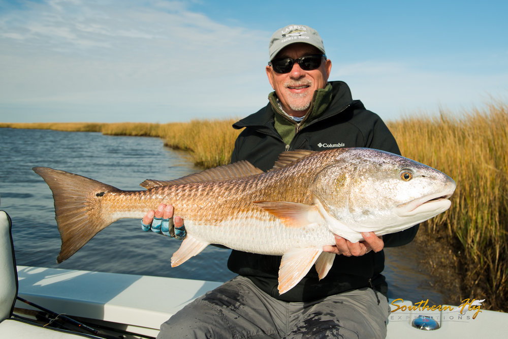 Southern Fly Expeditions fly fishing for redfish in the louisiana marsh
