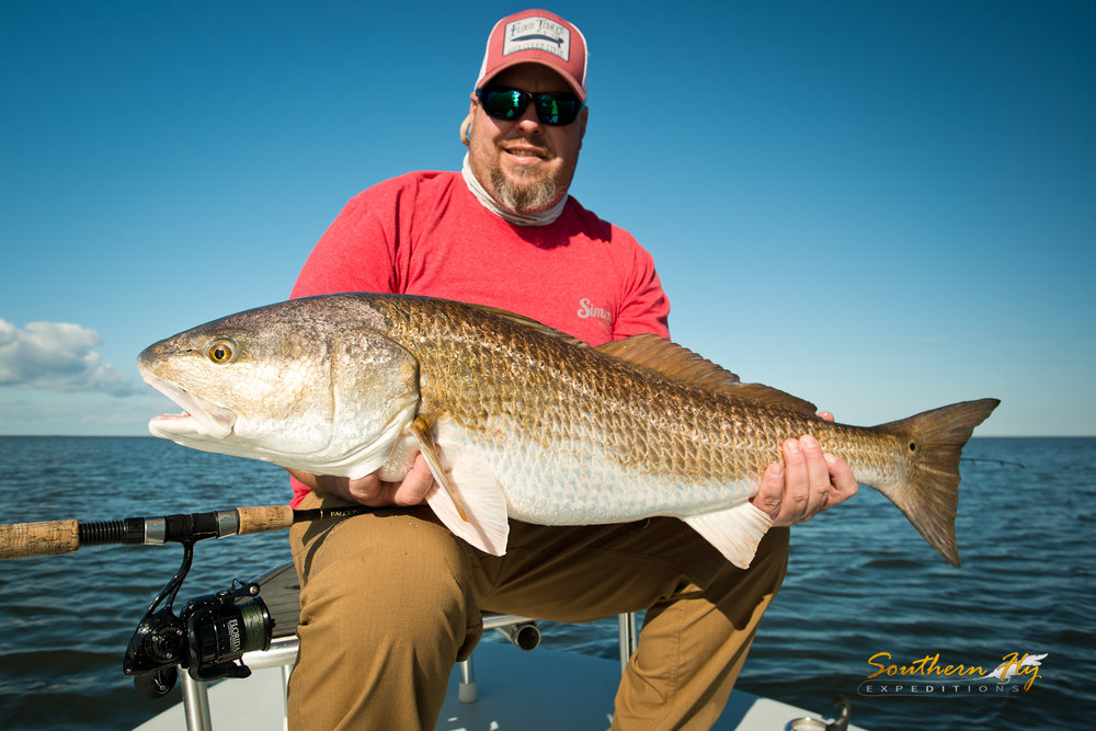 Redfish Fly Casting New Orleans Southern Fly Expeditions
