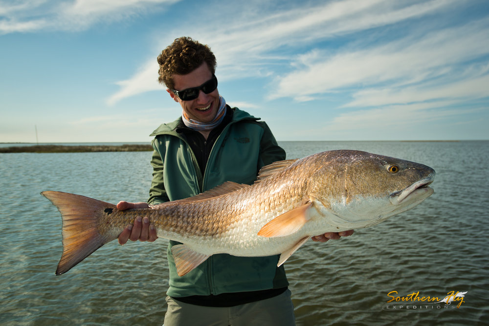 fly fishing new orleans with Southern Fly Expeditions how to catch redfish