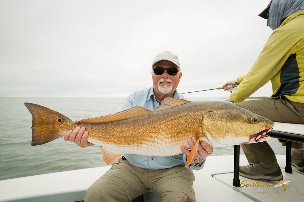 Southern Fly Expeditions huge redfish fly fishing guide with captain brandon keck