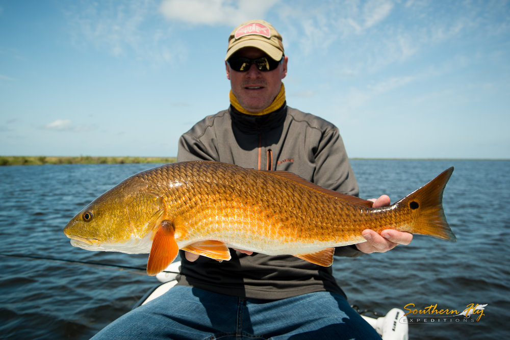 louisiana fly fishing Southern Fly Expeditions redfish fishing guide