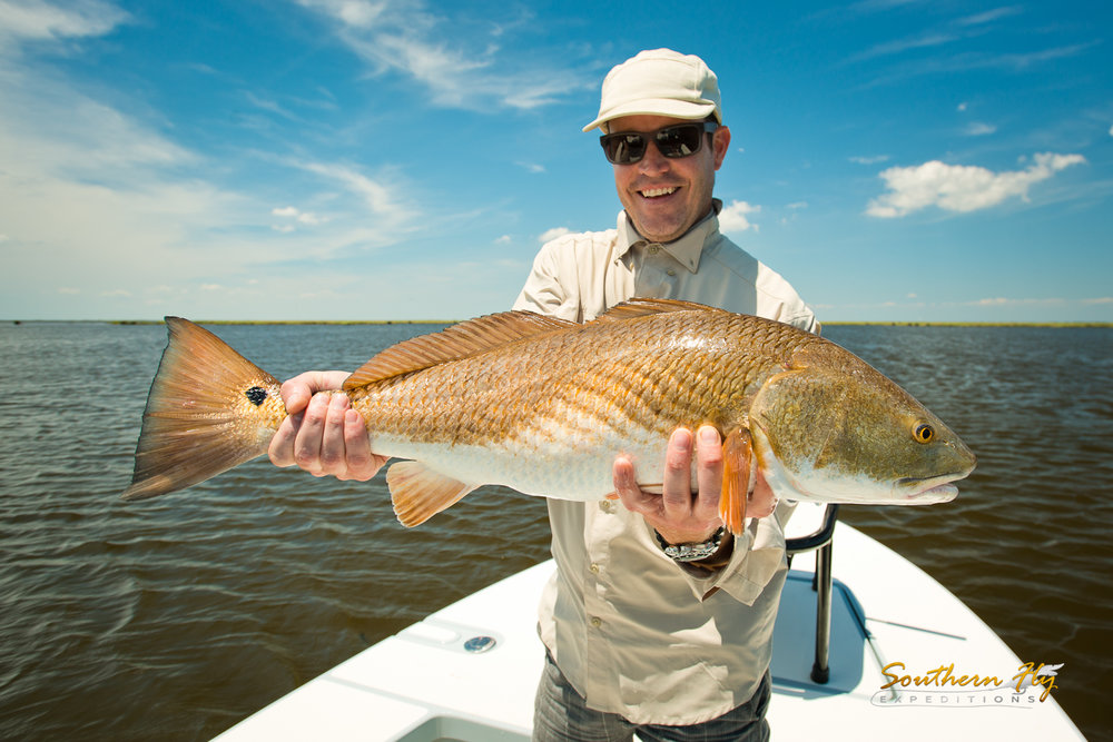 Record Sized Reds Fly Fishing Trip New Orleans