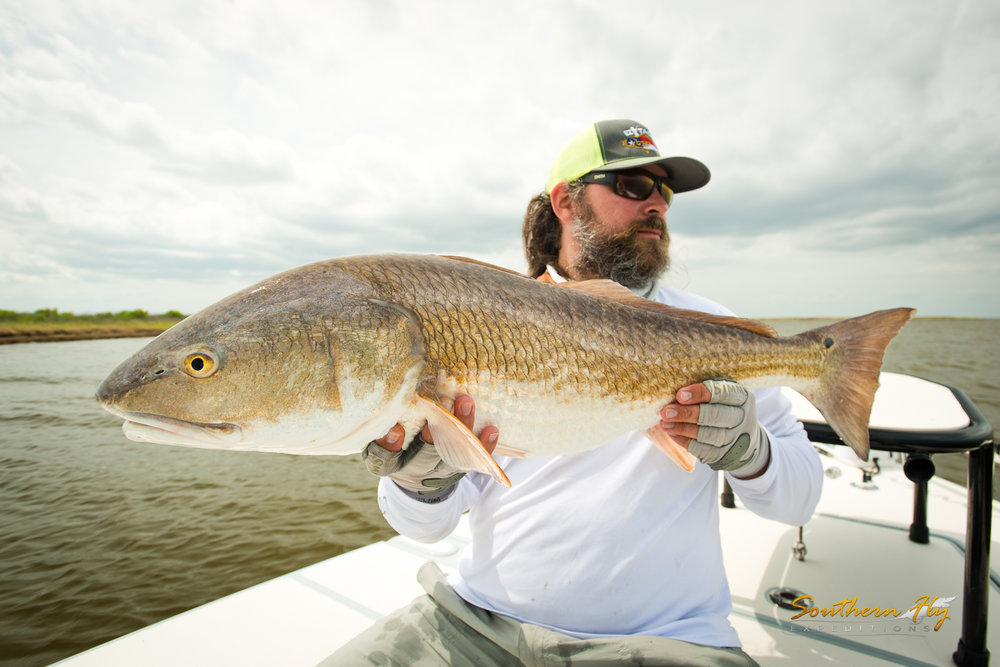 Fly Casting For Reds New Orleans