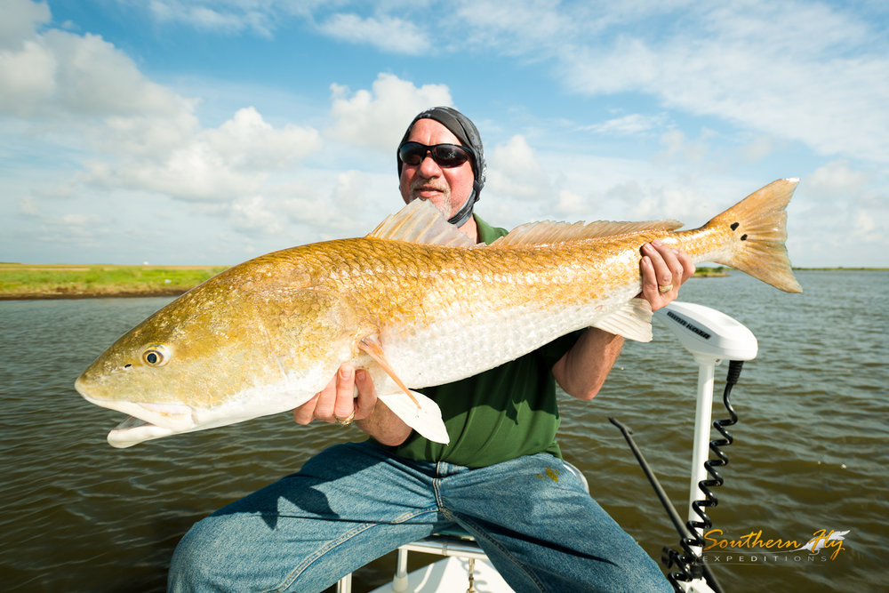Red Fish Fly Fishing Charter New Orleans Light Tackle