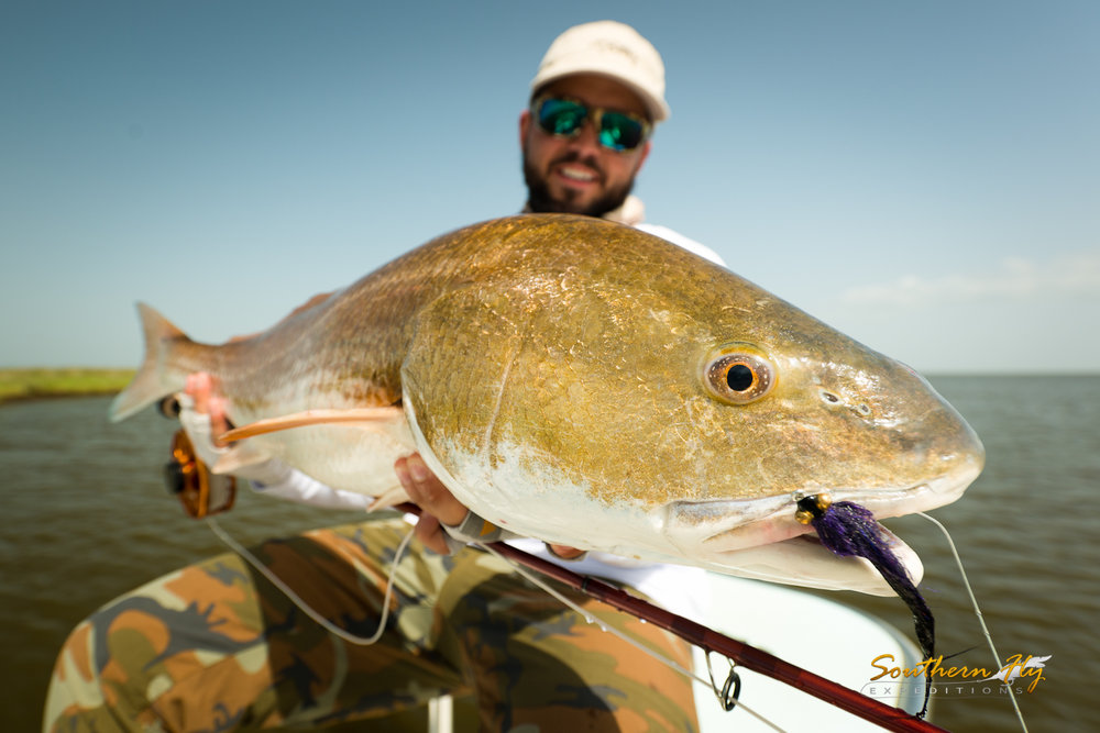 Fly fishing new orleans with southern fly expeditions the best redfish guide in louisiana