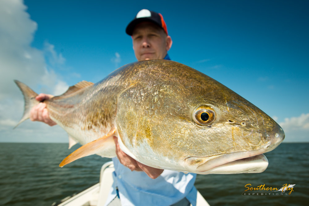 Fly Fishing New Orleans Redfish Charter Guide - Southern Fly Expeditions