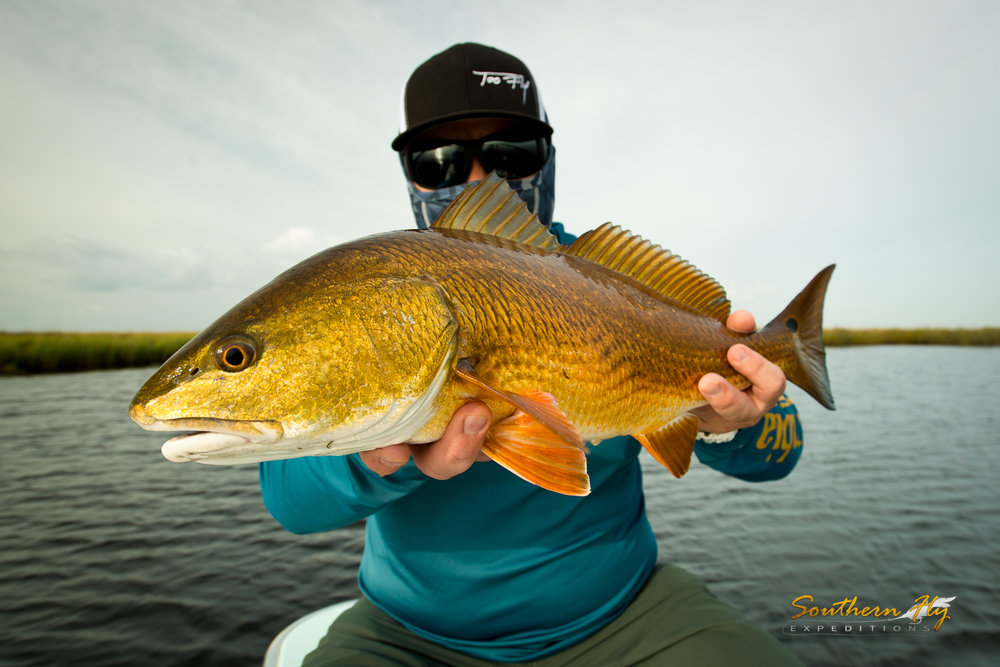 fly fishing new orleans redfish charter Southern Fly Expeditions