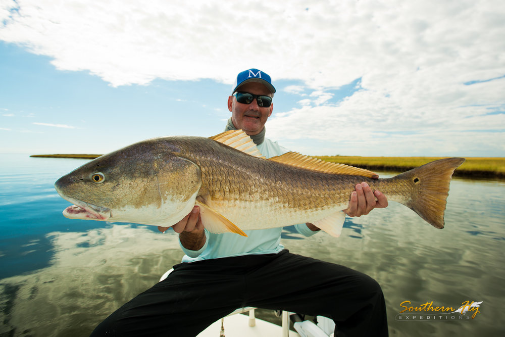 fishing for monster redfish in louisiana