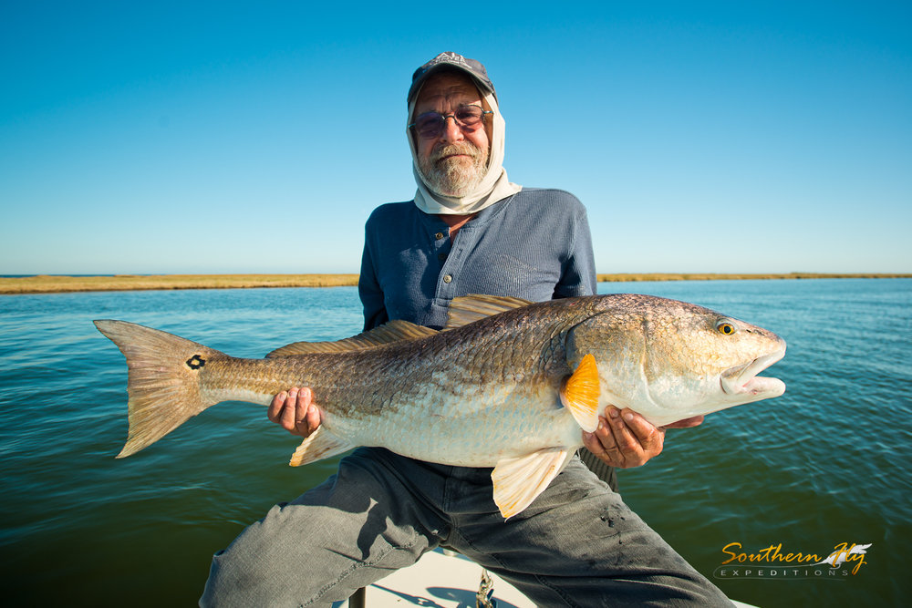 Sight Fishing Guide Southern Fly Expeditions