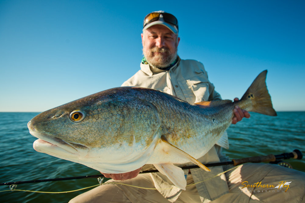 Red Drum Spin Fishing Guide Southern Fly Expeditions