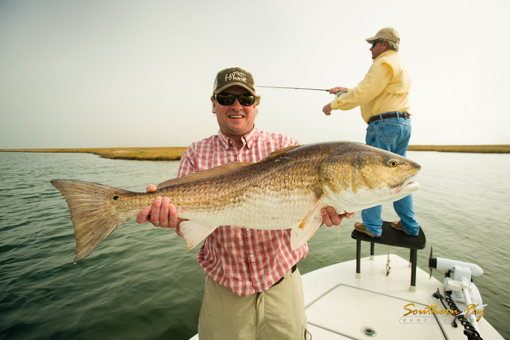 Sight Fishing Red Fish Shallow Waters with Southern Fly Expeditions