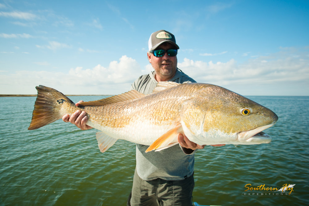 Best Red Fish Spin Fishing Guide Southern Fly Expeditions