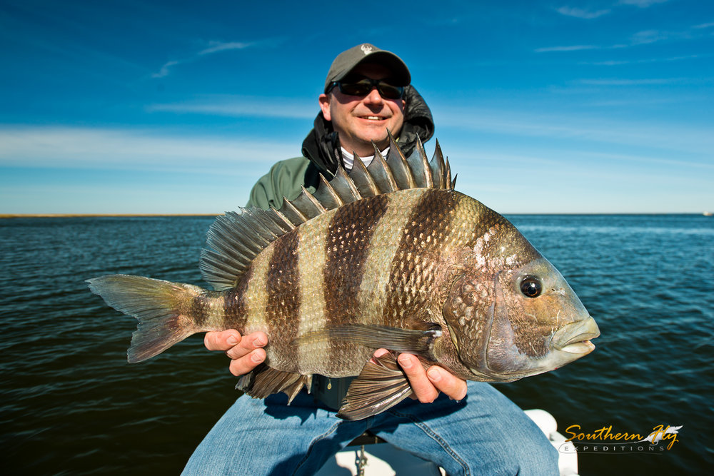 Sight Fishing Trips with Southern Fly Expeditions