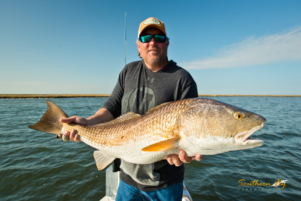 Sight Fishing New Orleans with Southern Fly Expeditions